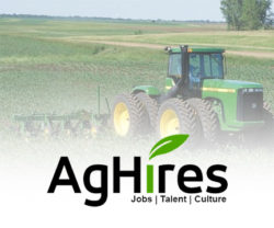 AGHires Jobs